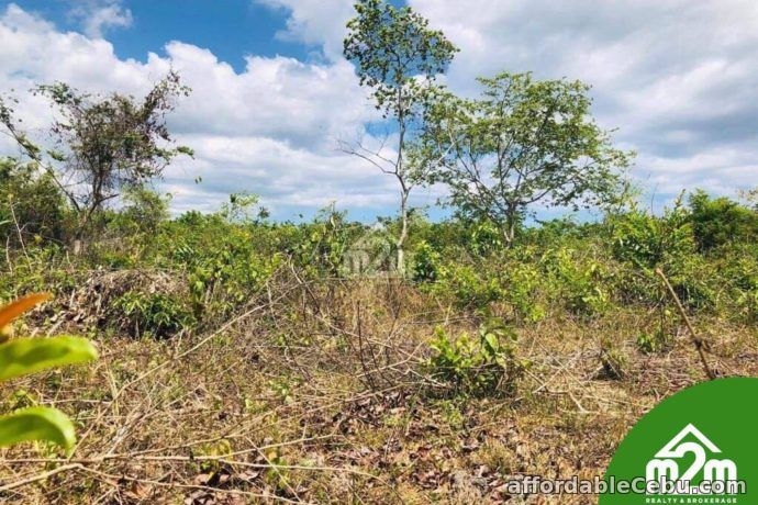 4th picture of Cloverville Subdivision(LOT ONLY) Totolan, Dauis, Bohol For Sale in Cebu, Philippines