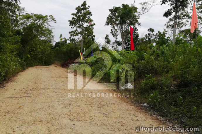 3rd picture of Vida Feliz Subdivision(LOT ONLY)Cabawan, Tagbilaran, null, Bohol, Philipines For Sale in Cebu, Philippines