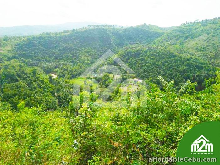3rd picture of Top Ville Subdivision(LOT ONLY) Can-asujan,Carcar, Cebu For Sale in Cebu, Philippines