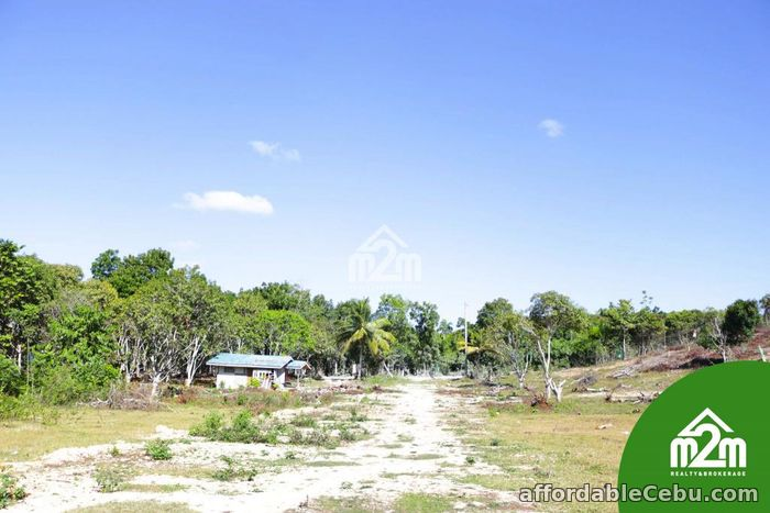 4th picture of Villa Maria Luisa(LOT ONLY) Montana, Baclayon,Bohol,Philipines For Sale in Cebu, Philippines