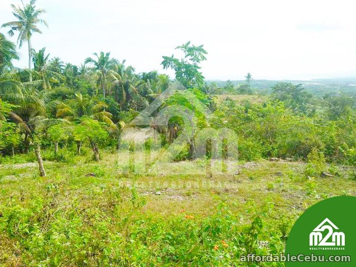 1st picture of Top Ville Subdivision(LOT ONLY) Can-asujan,Carcar, Cebu For Sale in Cebu, Philippines
