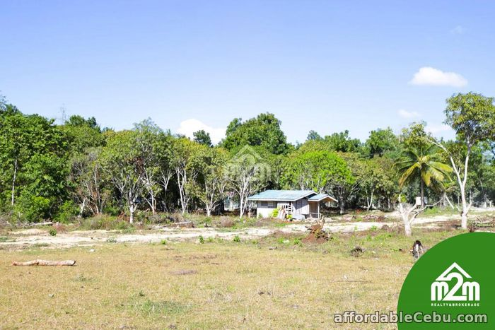 2nd picture of Villa Maria Luisa(LOT ONLY) Montana, Baclayon,Bohol,Philipines For Sale in Cebu, Philippines