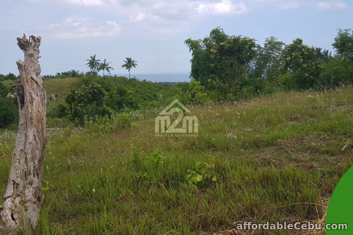 4th picture of La Verna Residences(LOT ONLY) Brgy. Can-asujan, Carcar City, Cebu For Sale in Cebu, Philippines