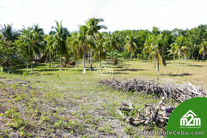 1st picture of Villa Maria Luisa(LOT ONLY) Montana, Baclayon, Bohol, Philipines For Sale in Cebu, Philippines
