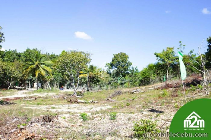 3rd picture of Villa Maria Luisa(LOT ONLY) Montana, Baclayon,Bohol,Philipines For Sale in Cebu, Philippines