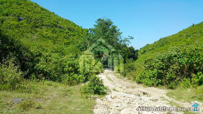 3rd picture of Mountain Breeze(LOT ONLY) Sandayong Sur, Danao City For Sale in Cebu, Philippines