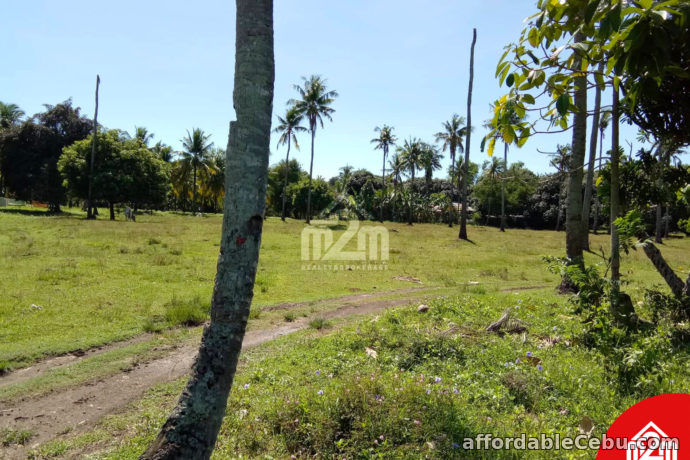 1st picture of Erizo De Mar Subdivision(LOT ONLY) Brgy. Tuyom, Carcar City, Cebu For Sale in Cebu, Philippines