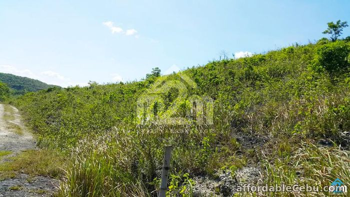 5th picture of Mountain Breeze(LOT ONLY) Sandayong Sur, Danao City For Sale in Cebu, Philippines
