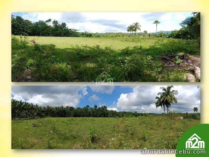2nd picture of San Isidro Enclave(LOT ONLY) Calidngan, Carcar City, Cebu For Sale in Cebu, Philippines
