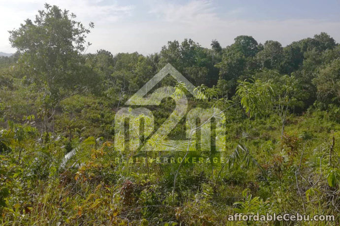 5th picture of Vida Feliz Subdivision(LOT ONLY)Cabawan, Tagbilaran, null, Bohol, Philipines For Sale in Cebu, Philippines