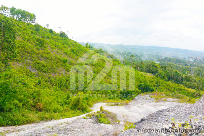 1st picture of Mountain Tops Subdivision(LOT ONLY) Bonsai Bolinawan, Carcar For Sale in Cebu, Philippines