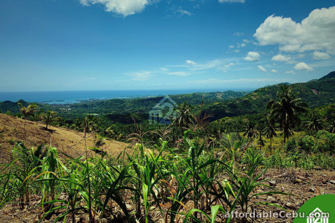 3rd picture of North Meadows Subdivision(LOT ONLY) Carmen, Cebu City For Sale in Cebu, Philippines
