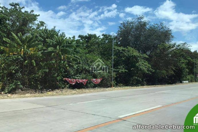 1st picture of Cloverville Subdivision(LOT ONLY) Totolan, Dauis, Bohol For Sale in Cebu, Philippines