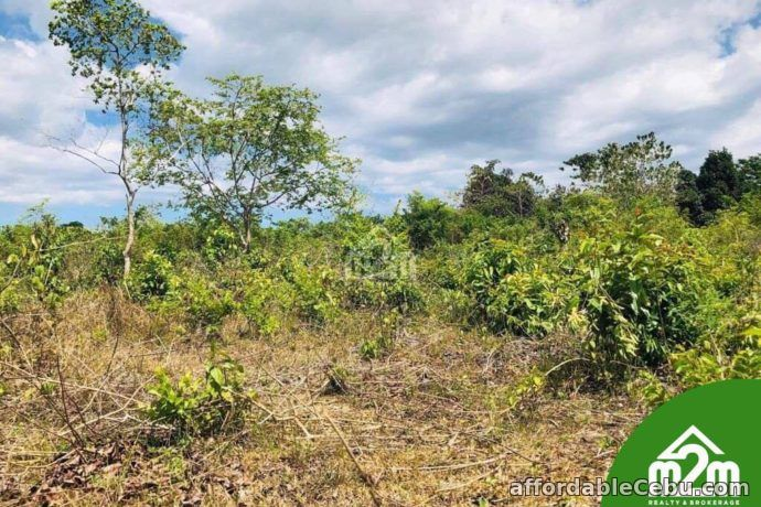 3rd picture of Cloverville Subdivision(LOT ONLY) Totolan, Dauis, Bohol For Sale in Cebu, Philippines