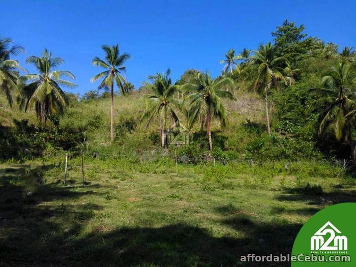 3rd picture of Mikaela Land Subdivision(LOT ONLY) Bagalnga,Compostela,Cebu,Philipines For Sale in Cebu, Philippines