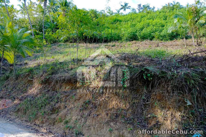3rd picture of Amaziah Residences(LOT ONLY) Bagalnga, Compostela For Sale in Cebu, Philippines