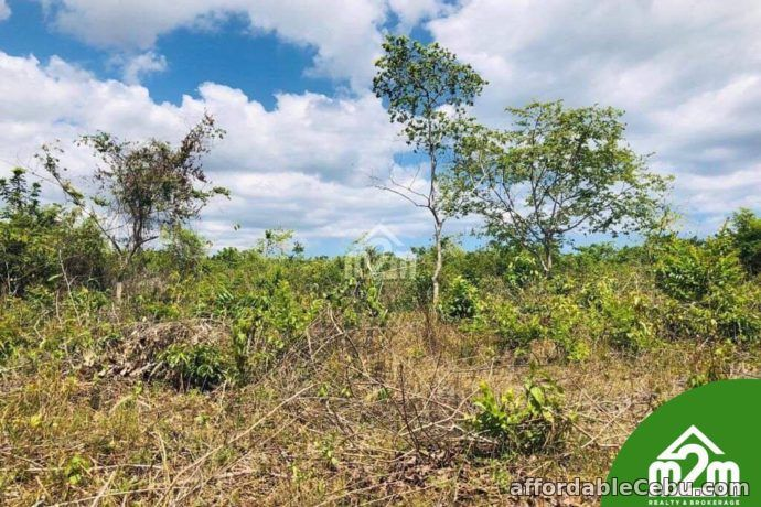 5th picture of Cloverville Subdivision(LOT ONLY) Totolan, Dauis, Bohol For Sale in Cebu, Philippines