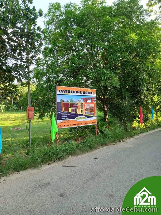 4th picture of Catherine Homes(LOT ONLY) Can-Asujan, Carcar City, Cebu For Sale in Cebu, Philippines