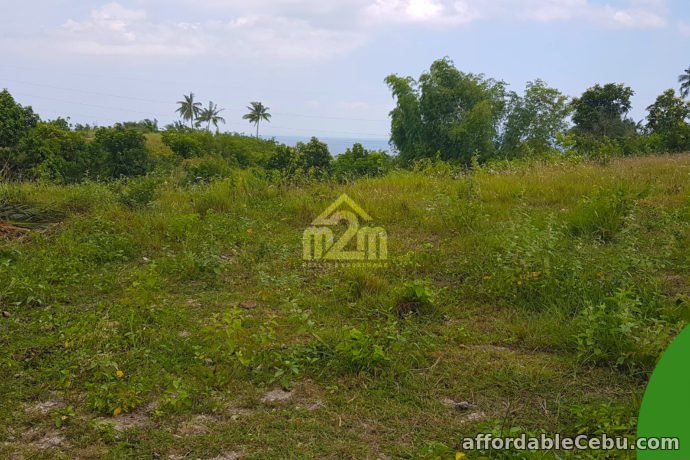 5th picture of La Verna Residences(LOT ONLY) Brgy. Can-asujan, Carcar City, Cebu For Sale in Cebu, Philippines