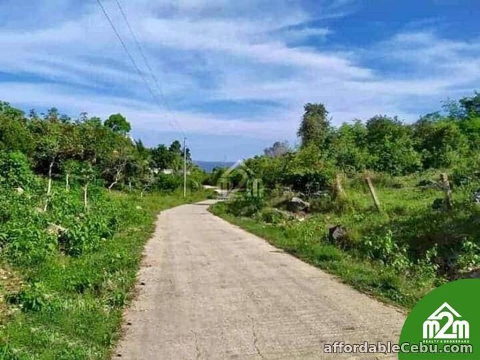 2nd picture of Mia Verde Subdivision(LOT ONLY) San Isidro, Baclayon,Bohol,Philipines For Sale in Cebu, Philippines