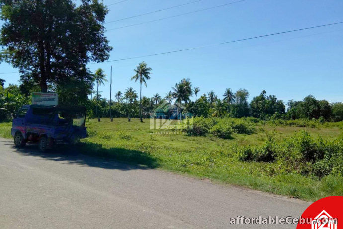 5th picture of Erizo De Mar Subdivision(LOT ONLY) Brgy. Tuyom, Carcar City, Cebu For Sale in Cebu, Philippines