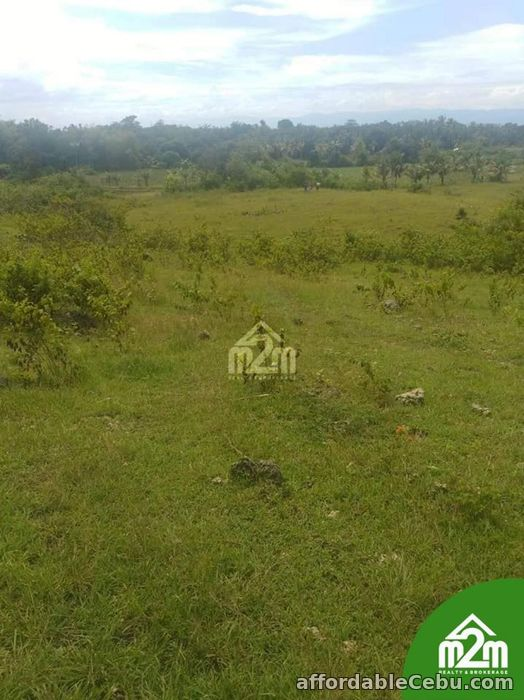 1st picture of Zion Isabel Subdivision(LOT ONLY) Tomonoy, Moalboal,Cebu,Cebu,Philipines For Sale in Cebu, Philippines