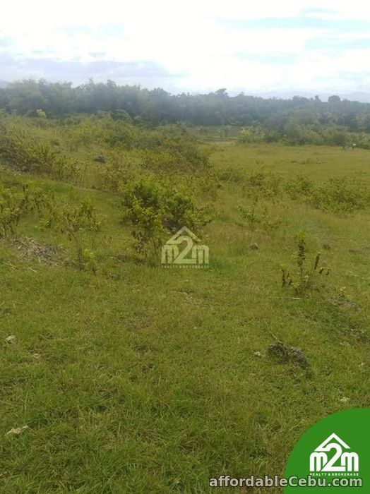 2nd picture of Zion Isabel Subdivision(LOT ONLY) Tomonoy, Moalboal,Cebu,Cebu,Philipines For Sale in Cebu, Philippines