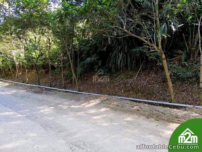 4th picture of Haribel Residences(LOT ONLY) Brgy. Polog, Consolacion, Cebu, Philipines For Sale in Cebu, Philippines