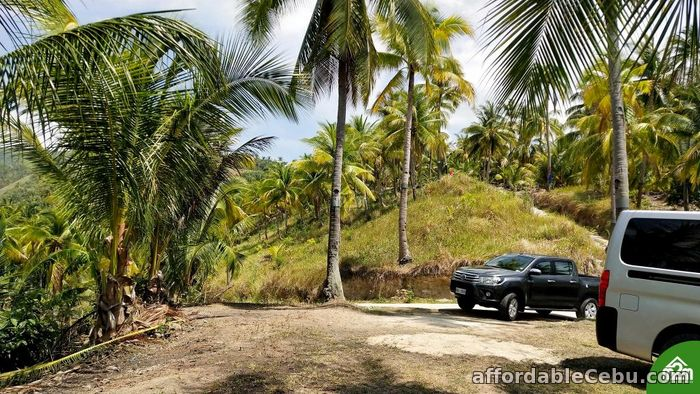 3rd picture of Breeze Highlands(LOT ONLY)Sogod,Cebu,Cebu,Philipines For Sale in Cebu, Philippines