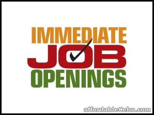 1st picture of Required Accountant / Accounts Executive Offer in Cebu, Philippines