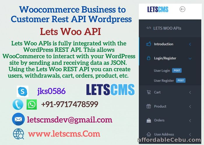 1st picture of WordPress Rest API Plugin | Business to Customer Rest API Woocommerce For Sale in Cebu, Philippines
