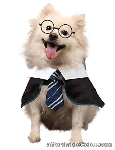 1st picture of Coomour Wizard Cosutme Pet Puppy Cute Outfits Clothes for Dogs Cats Shirt with Glasses For Sale in Cebu, Philippines