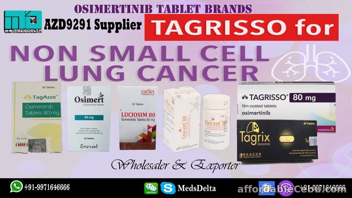 1st picture of Indian Osimertinib Tablet Tagrix Beacon Price Online For Sale in Cebu, Philippines