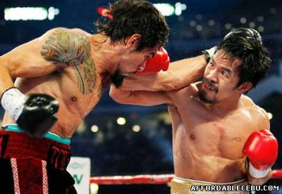 Picture of Pacquiao vs Margarito Replay Videos