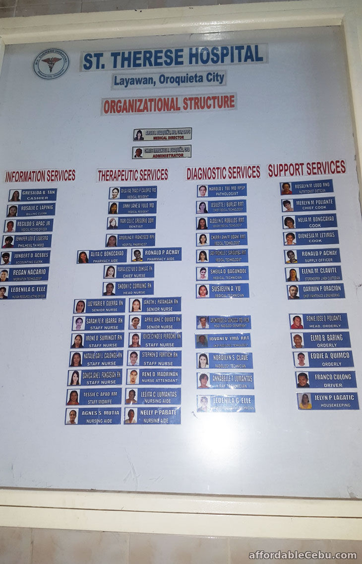 Hospital Organizational Chart Sample Business 30434