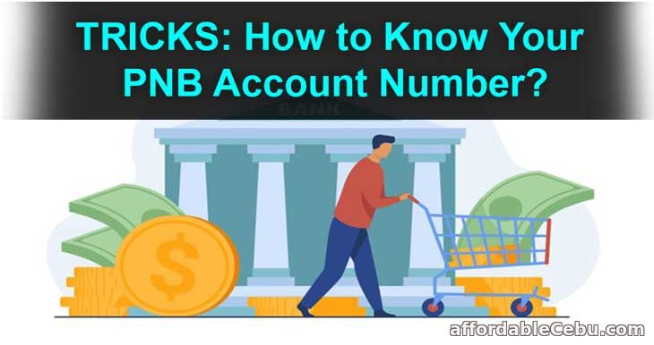 How to Know Your PNB Account Number?