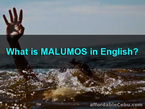 What is Malumos in English?