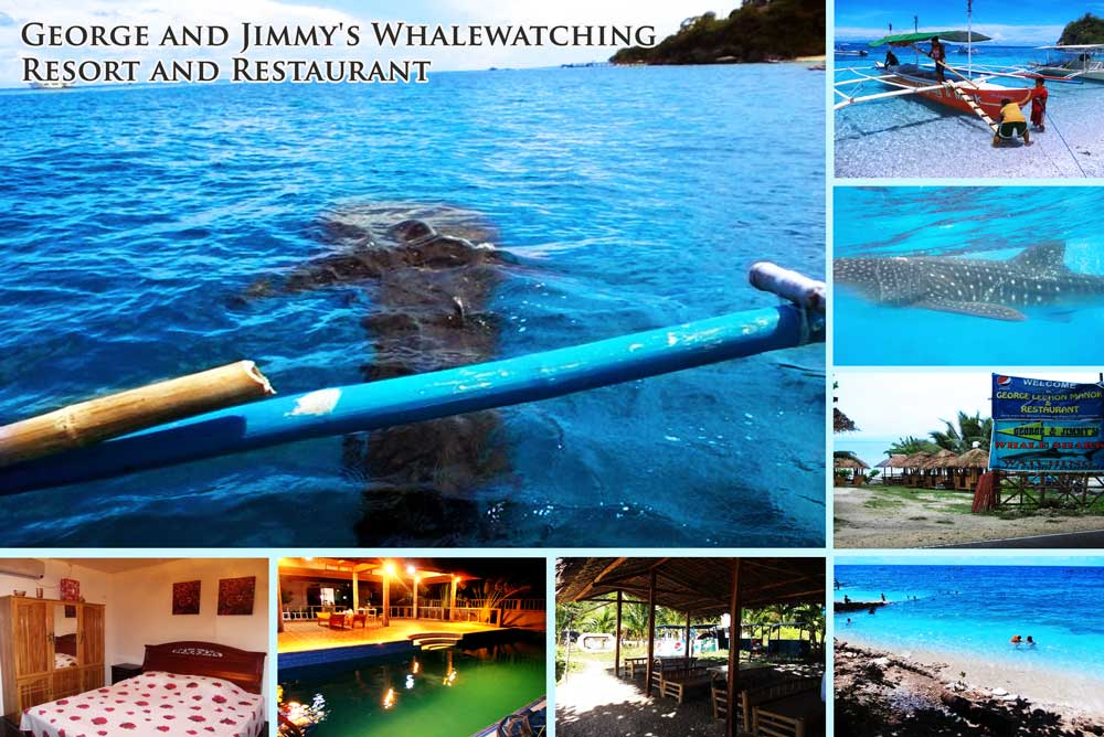 GEORGE & JIMMY'S WHALEWATCHING RESORT AND RESTAURANT