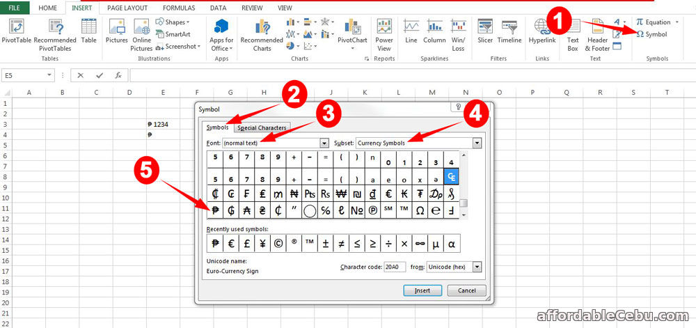 Peso Sign (₱) in Excel