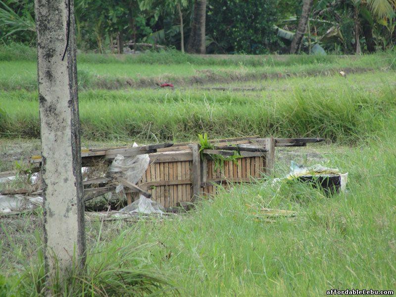 Debris of buhawi